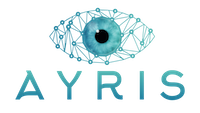 Ayris — cyber security, pentest and forensic